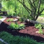 Chattanooga Lawn Care